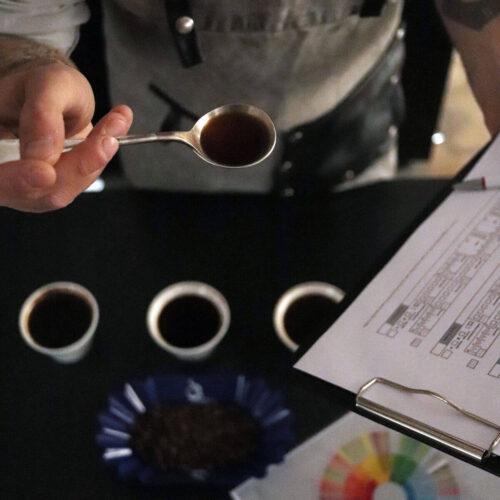 Szkolenie kompletne baristy | ocena kaw | Owoce i Warzywa