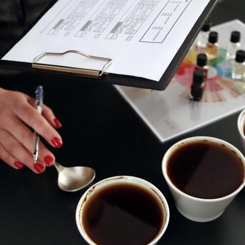 Szkolenie | Sensoryczna ocena jakości kaw | Formularz SCA | Owoce i Warzywa